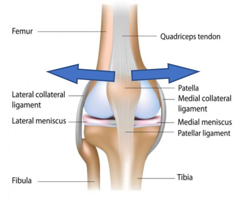 orthopedic near me